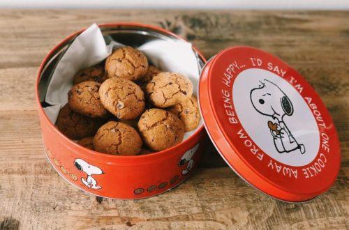 Cookies alle nocciole con gocce di cioccolato, con farina di riso e farina di riso integrale, farina di nocciole, senza latticini